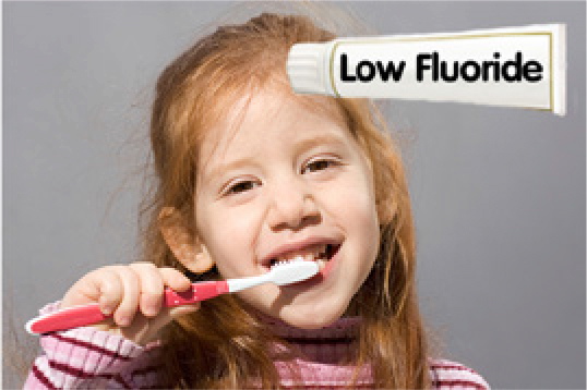 18 months to 6 years – use children's low fluoride toothpaste